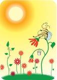 História do mel ilustração stock