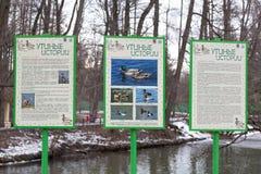 Histórias do pato do sinal no parque Kuz'minki Fotografia de Stock