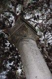 histórico de la columna abandonado en Pesaro fotografía de archivo libre de regalías