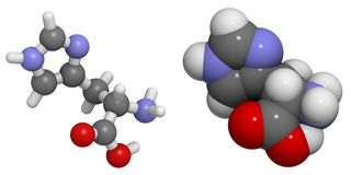 Histidine (His, H) molecule Royalty Free Stock Images