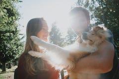 Histoire d'amour flânez famille et chien aimés Futurs maman et papa photographie stock