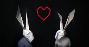 Histoire d'amour heureuse de lapins de valentines Images stock