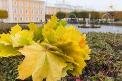 Histoire d'automne Photo libre de droits