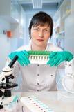 Histopathologist på arbetsplatsen Royaltyfria Bilder