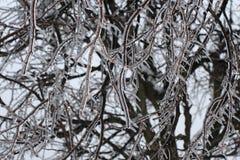Historia del hielo Imagenes de archivo