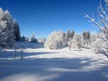 Historia 5 del invierno Imágenes de archivo libres de regalías