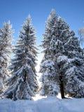 Historia 2 del invierno Foto de archivo libre de regalías