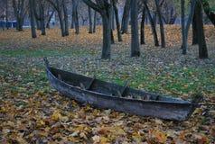 Historia nostálgica del arce Imagen de archivo libre de regalías