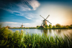 Historians Dutch windmills Royalty Free Stock Photo