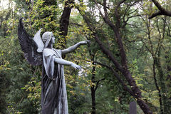 Historic Angel from the mystery old Prague Cemetery, Czech Republic Stock Photos