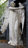 Historic Angel from the mystery old Prague Cemetery, Czech Republic Stock Images
