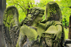 Historic Angel from the old Prague Cemetery, Czech Republic Royalty Free Stock Images