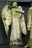 Historic Angel from the old Prague Cemetery, Czech Republic Royalty Free Stock Image