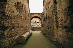 Historic architecture of Rome colosseum Royalty Free Stock Photo
