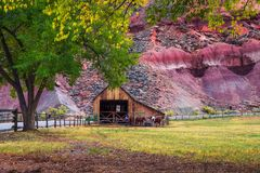 Historic barn with horses in the Capitol Reef National Park, Utah stock images
