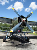 Historic biplane. Frontview of An-2 Antonov, parking on airfield Stock Images