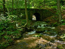 Historic bridge in the forest Royalty Free Stock Image