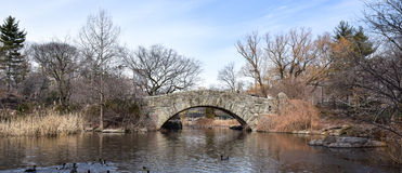 Historic bridge over pond on a winter day with blue sky and Clear Water reflection. Arched Stone Bridge overwater with reflection a blue sky Barren trees ducks Stock Photos