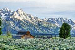 Historic buildings below snow capped mountains in The Grand Tetons. Stock Images
