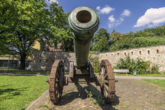 Historic cannon in Magdeburg, Germany Stock Images