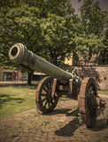 Historic cannon in Magdeburg, Germany Stock Photo