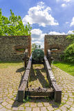 Historic cannon in Magdeburg, Germany Stock Photos