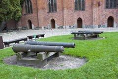 Historic Cannons Marys Castle Malbork royalty free stock photography