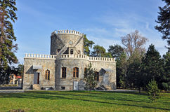 Historic Castle: Iulia Hasdeu Royalty Free Stock Photos