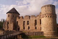 Historic castle in nature with cloud sky Royalty Free Stock Images