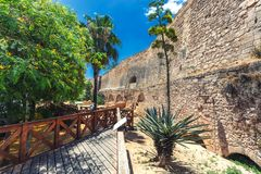 Historic castle wall in Palma de Mallorca, Spain. Historic castle wall view and different trees in Palma de Mallorca, Spain stock photo
