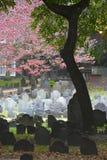 Historic cemetery. Historic landmark cemetery Granary Burying Ground, founded in 1660, in  Boston, Massachusetts Stock Image