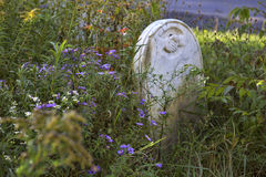 Historic Cemetery. In Western New York. Image shows overgrown gravestone(s) and the forest slowly reclaiming its land Stock Image