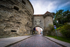 Historic city walls in the Old Town,  Tallinn, Estonia. Royalty Free Stock Photos