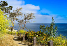 Historic Coast Walk at La Jolla Cove in San Diego, California. The historic Coast Walk hugs the cliffs above La Jolla Cove in San Diego, California royalty free stock image