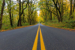 Historic Columbia River Highway Two Way Lanes in Fall Royalty Free Stock Photos