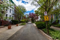 Historic District of Court Street in Wooster Square in New Haven. Connecticut Royalty Free Stock Images