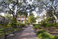 Historic district of Savannah Georgia. Square and buildings in historic district of Savannah Georgia stock photos