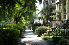 Historic district sidewalks, rowhouses and oak trees in Savannah, Georgia, USA stock image