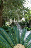 Historic district sidewalks, rowhouses and palms in Savannah, Georgia Stock Image