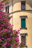 Historic facade of an old house with flowers. Historic facade of an old house with flowers, Croatia, Europe Royalty Free Stock Photos