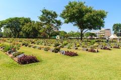 Historic gravestone at world war II Cemetery, Kanchanaburi, Thailand. Royalty Free Stock Photo