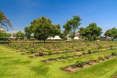 Historic gravestone at world war II Cemetery, Kanchanaburi, Thailand. Royalty Free Stock Photos
