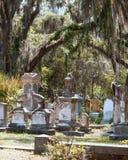 Historic graveyard Royalty Free Stock Photos