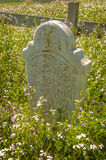 Historic Headstone of Moss Landing Founders Stock Images