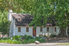 Historic house under old and big oak tree. CAPE TOWN, SOUTH AFRICA - DECEMBER 15, 2014:  Historic old house under a very old and big oak tree on the farm Royalty Free Stock Photography