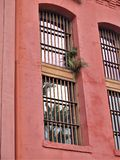 Windows of Historic Jail in St. Augustine. The historic jail served the city of St. Augustine from 1891-1953 with maximum security cells where only the most Stock Photo