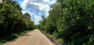 Historic Jungle Trail Road royalty free stock photography