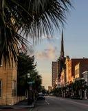 Historic King Street, Charleston, SC. Palm trees on historic King Street in historic Charleston, South Carolina royalty free stock images