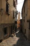 Historic Labin in Istria, Croatia. Historic Labin in Istria, a town on a hilltop, Croatia stock photo
