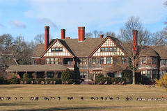 Historic Mansion with Geese on the Field Stock Images